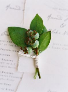 sophisticated all green boutonniere