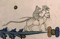 Rat riding a cat and hawking (@BIUSteGenevieve, Pontifical de Guillaume Durand, 14th c.)