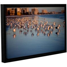 ArtWall Lindsey Janich Seagulls II Gallery-Wrapped Floater-Framed Canvas, Size: 24 x 36, Brown