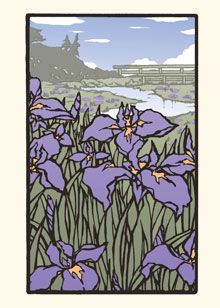 Iris in Bloom, letter press note cards
