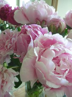 It's almost Peony time!! @Trouvais.com
