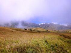 Stunning savanna over 2000 meter above sea level. Photo by Rini Raharjanti
