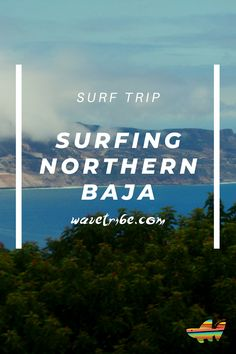 Are you currently dreaming of your next surfing trip after this pandemic? Are you itching to feel the ocean breeze and ride some awesome waves? Visit our Northern Baja Surf Guide and make Northern Baja your next surfing destination once this pandemic is over.   #surftrip #wavetribe #sharethestoke #surf #stoke #surftravel #northernbaja #malibusurfing #bajamexico #surfingmexico #bajamalibu #bajaadventures #surfadventures #malibubeach #baja Surf Travel, Surf Trip, Surfing Destinations, Malibu Beaches, Breeze, Dreaming Of You, Mexico, Waves, Ocean