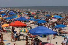 Tassy's Pier Restaurant, Savannah, GA | Richard Burkhart/Savannah Morning News Beachgoers and tents are packed ...
