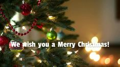 Merry Christmas and a Happy New Year from our team atWarrnambool Dental ! Thank you for your continuous support and patronage. We wish you happiness and prosperity in the years to come. Dental Emergency, Emergency Care, Dental Aesthetics, Dentist Near Me, Dental Surgeon, Dental Center, Family Dentistry, Dental Problems, Dental Services