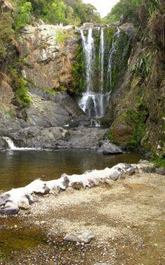 Piroa falls swimming hole picnic area NZ Swimming Holes, Picnic Area, South Island, Small Island, Pacific Ocean, Fiji, New Zealand, Waterfall, Australia