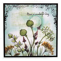 CS111D Wildflowers - Lisa 4