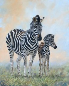 The Wildlife Art of David Stribbling. Original oil paintings of wildlife subjects by British artist, David Stribbling. African wildlife and big cats Wildlife Paintings, Wildlife Art, Animal Paintings, Animal Drawings, Elephant Paintings, Zebra Painting, Zebra Art, Jungle Animals, Cute Animals
