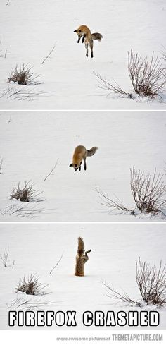 Firefox has encountered a problem…