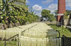 Hacienda Sotuta de Peón, la cual tuvo su esplendor durante la época del auge henequenero. Conócela en tu paso por #Cancún. Se ubica en el municipio de Tecoh del estado mexicano de Yucatán.  http://www.bestday.com.mx/Vuelos/American-Airlines/Cancun/