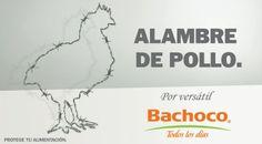 alambre de pollo #bachoco