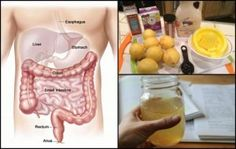 Cleanse Your Colon For Perfect Health