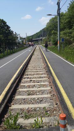 남한강 자전거길 입니다. 주변의 경치가 사뭇 틀리더군요^&^