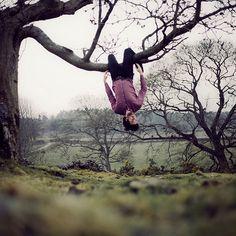 ....and climb a tree ;-)