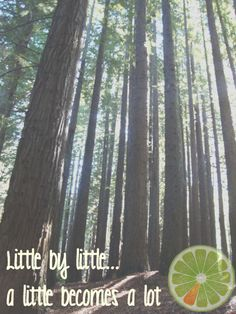 Little by Little a little becomes a lot.  One step at a time  Healthy Life Coaching www.healthylifecoaching.com.au