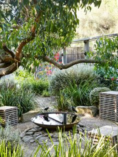 Backyard garden ideas how to build a small garden,plant your own garden house garden landscape design,how to plan out a vegetable garden outdoor garden items. Outdoor Gardens, Australian Garden Design, Water Features In The Garden, Cottage Garden, Australian Native Garden, Urban Garden, Dream Garden, Backyard Landscaping, Backyard