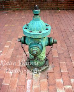 Teal Hydrant, Washington D.C. Photography Print By Klaire Warren 8X10 Matted 11X14 Inspirational Artwork for the Home on Etsy, $15.00
