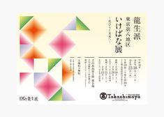龍生派年間ビジュアル 2015-2016 | coton design