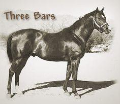 THREE BARS - Quarter Horse and Promotion of the Supreme Champion Award Program