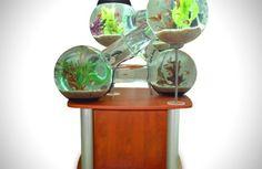 Tolles Labyrinth Aquarium sphäre schwimmen