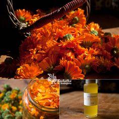 Jedná se o výluh v oleji, pravý měsíčkový olej se připravuje jinak. Okvětními lístky měsíčku naplníme sklenici (doporučuji přidat list bršl...