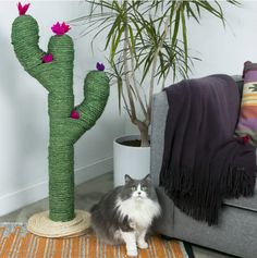 Tuto: make a beautiful cat tree in the shape of a cactus! - Elodie Menerat - - Tuto : réalisez un arbre à chat splendide en forme de cactus ! Tuto: make a beautiful cat tree in the shape of a cactus! Cactus Cat, Cactus Flower, Ideal Toys, Cat Scratcher, Cat Room, Small Cat, Animal Projects, Diy Projects, Cat Crafts