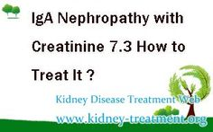 How to treat IgA Nephropathy with creatinine 7.3 ? In clinic, creatinine level 7.3 indicate that the disease has progressed into kidney failure. In this stage, there are so many toxins in the patient's body. So the patient need to clean the toxins and deposit in the body to make a good environment for repairing the damaged kidney cells.