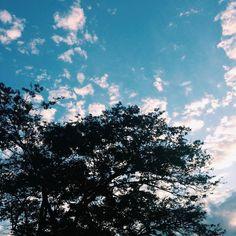 by lantanaf