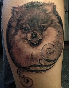 The 10 Coolest Pomeranian Tattoo Designs In The World Female Dog Names, Best Dog Names, Brown And White Horse, Dog Memorial Tattoos, Dog Tattoos, Tatoos, Pet Portraits, Tattoo Designs, Tattoo Ideas