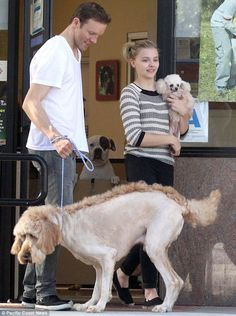 That's one cool canine! Chloe Moretz gives her dog a Mohawk cut Mohawk Cut, Crazy Day, She Movie, Chloe Grace Moretz, Big Picture, Dog Grooming, Hottest Photos, Pretty Hairstyles, Family Photos