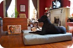 Sally Ann:  DIY Great Dane Bed made from toddler mattress...Im gonna use this someday