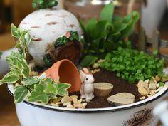 Gemüse-Miniaturwelt #minigarten #miniaturwelt #minidekoration #elfe #mädchen #dekoartikel #erlebnisgärtnerei #hödnerhof #ebbs #mils #dez #innsbruck #tirol #größtegärtnereitriol #ausflugsziel #erleben #pflanzenwelt #dekowelt #gartenpflanzen #minipflanzen #zimmerpflanzen #saisonpflanzen #gärtnerei #eigenproduktion Innsbruck, Mini Plants, Garden Plants, House Plants