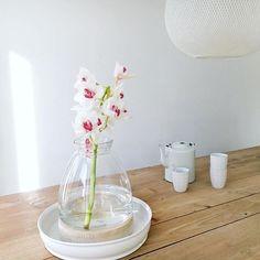 Vase Casa 20€