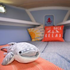 Vberth remodeling | Sailboat remodeling | Sailing Blog | Sailing | Sailboat colors | Whale shark | travel graham