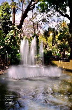 Water fountain in the municipal garden, built in 1880 to honour Queen Amélia.