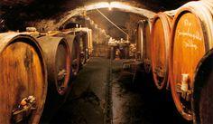 The cellars of Jens Bettenheimer  www.genialeweine.com
