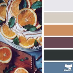 today's inspiration image for { seasonal serving } is by @_ewabakrac ... thank you, Ewa, for another incredible #SeedsColor image share!