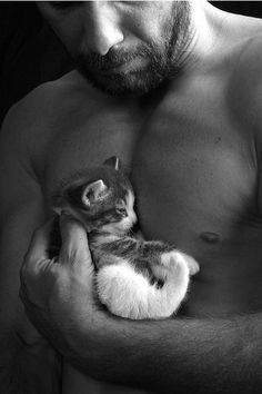 Man Holding Kitten