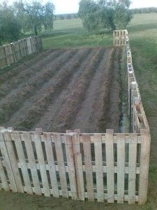 DIY: How to Build a Pallet Fence - you don't even have to disassemble them! Via Homestead Survival