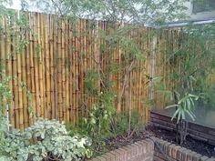 Crear una valla con cañas