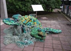 curates marine biology sea life art in museums   Marine debris Sea Turtle   Coral reefs and snorkeling   Pinterest