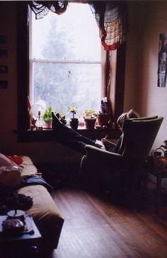 Comfort & cacti