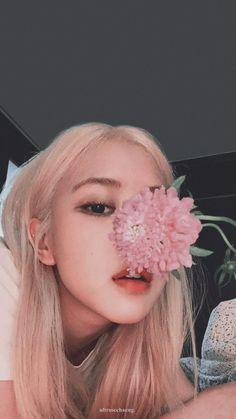 Kpop Aesthetic, Aesthetic Girl, Aesthetic Pastel, Rose Park, Blackpink Photos, Rose Wallpaper, Jennie Blackpink, Park Chaeyoung, Blackpink Jisoo