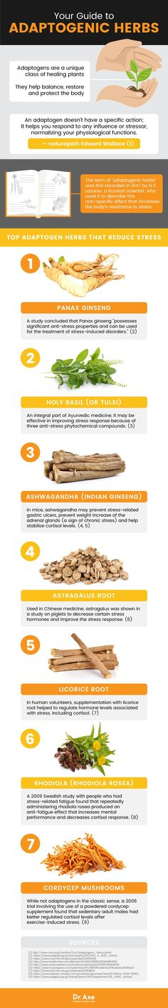 """7 Adaptogenic Herbs or Adaptogens that Help Reduce Stress Natural medicine has long appreciated the benefits of herbs and food as medicine. One such example of this is adaptogenic herbs, or """"adaptogens. Acute Stress, Chronic Stress, Stress And Health, High Cortisol, How To Relieve Stress, Reduce Stress, Rhodiola Rosea, Holistic Remedies, Diets"""