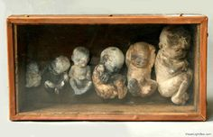 christina bothwell, box of babies