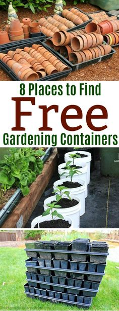8 Places to Find Free Gardening Containers, Gardening, Gardening Tips,