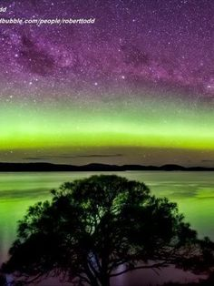 Aurora Australis taken from a backyard porch in Glenorchy at 1am. (Supplied: Robert Todd)