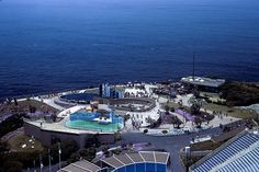Marineland of the Pacific...  1954 thru 1987 Was home to Orky and Corky.  And Bubbles the whale. Opened 1 year before Disneyland.