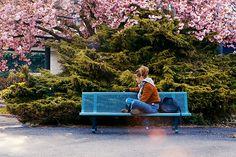 Blue is the Warmest Colour (v.f. La Vie d'Adèle) - Adèle Exarchopoulos