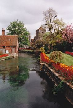 Kent, England.  Our tips for things to do in Kent: http://www.europealacarte.co.uk/blog/2013/02/18/what-to-do-kent/